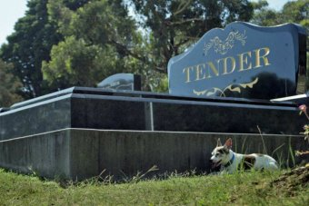 Tender A Documentary about a Funeral Service.  Dog on a grave.